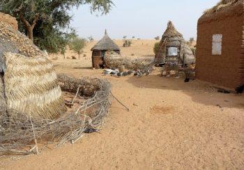 Wykład pt. Z pustyni w tropiki. Taksówką przez Niger i Benin